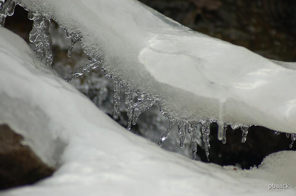 Ice  by pbaack