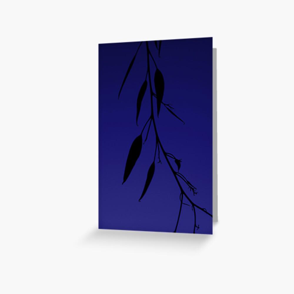 Blue gum Greeting Card