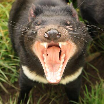 Screaming Hello! - Tasmanian Devil by BonnieMadeThis