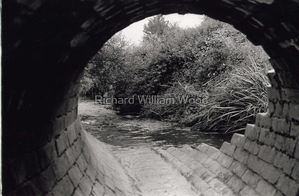 sandon tunnel by Richard William Wood