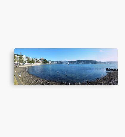 Wellington panorama Canvas Print