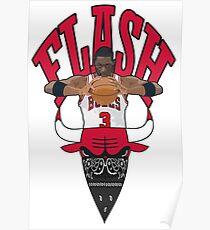 FLSH Poster