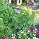 nice flowers spread by oilersfan11