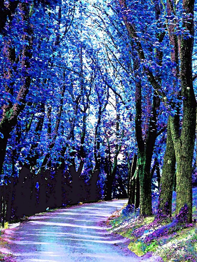 Lavender walk by Robyn Lakeman