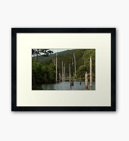 Lake Elizabeth Otway's Framed Print