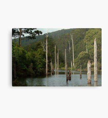 Lake Elizabeth Otway's Metal Print