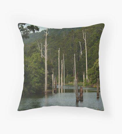 Lake Elizabeth Otway's Throw Pillow