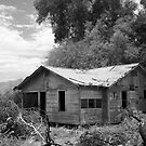 Old Homestead by SteveRoy
