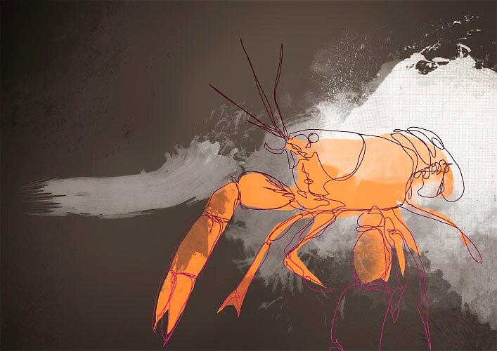 Lobster by karlos