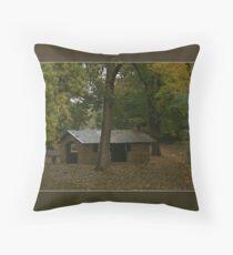 Stone Hut Bright Victoria Throw Pillow