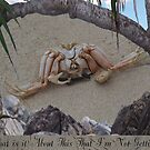 Feeling Crabby? by Cathie Sherwood