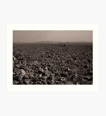Desolate, Desperate and Dehydrated Art Print