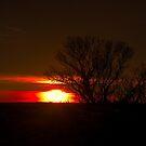 Dawn's Delight by IanMcGregor