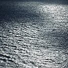 TEXTURES OF THE SEA by NICK COBURN PHILLIPS