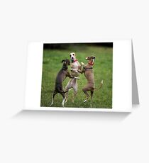 Wog Dogs Dancing Greeting Card