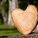 wooden heart by blacqbook