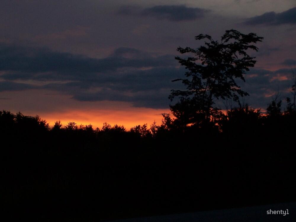Sunset by shenty1