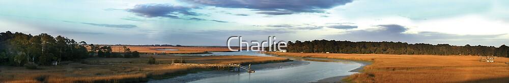 Turner Creek by Charlie