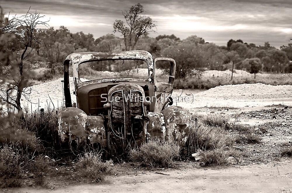 Seen better days by Sue Wilson (Kane)