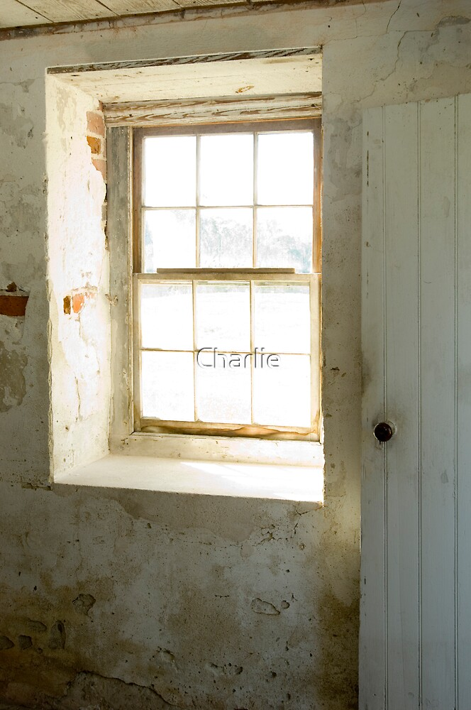 Basement Window 1 by Charlie