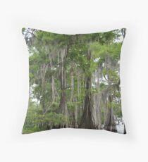 Cypress trees in Louisiana Throw Pillow