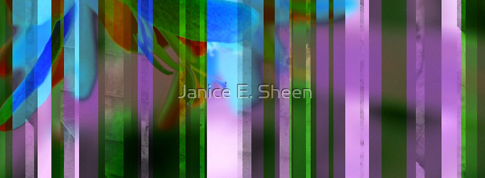 stripes in the garden by Janice E. Sheen