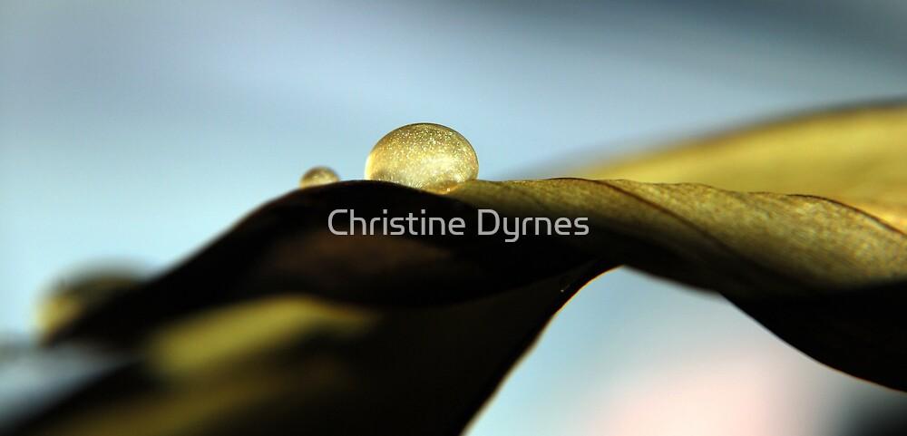 glow autumn drop by Christine Dyrnes