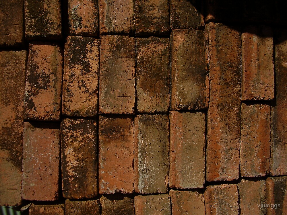 Brick Wall by vjwriggs