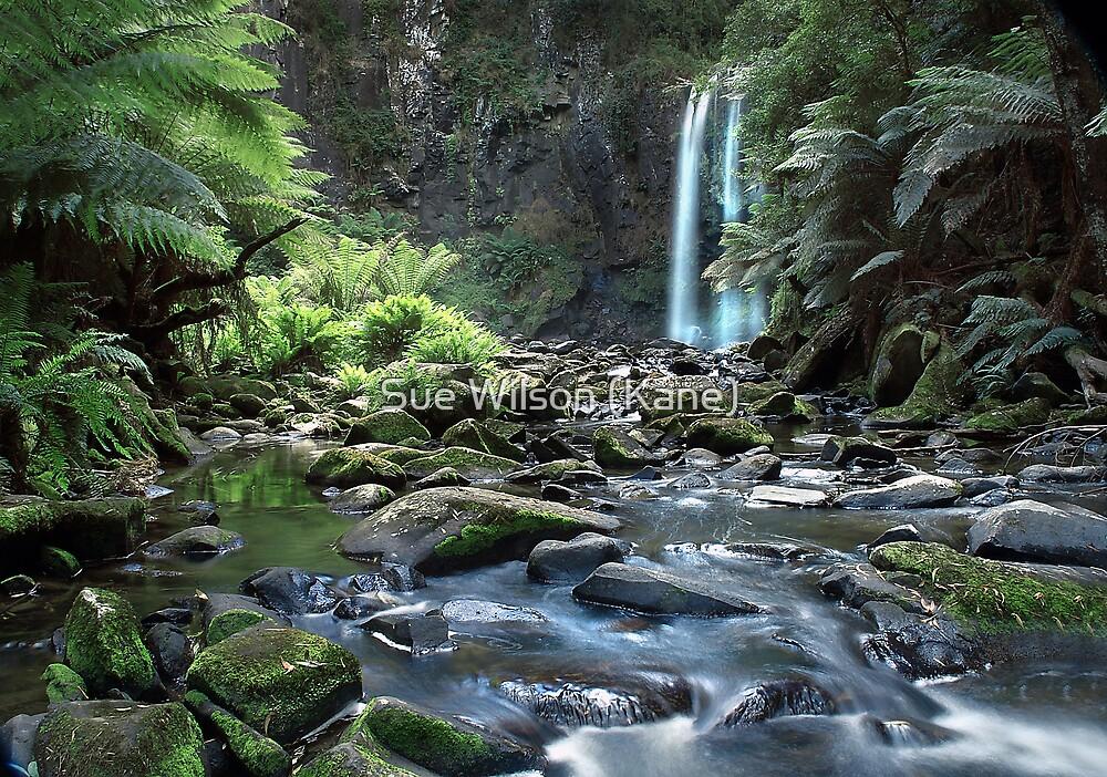 Hopetoun Falls by Sue Wilson (Kane)