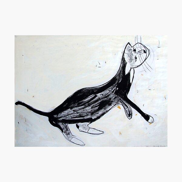 cat1 Photographic Print