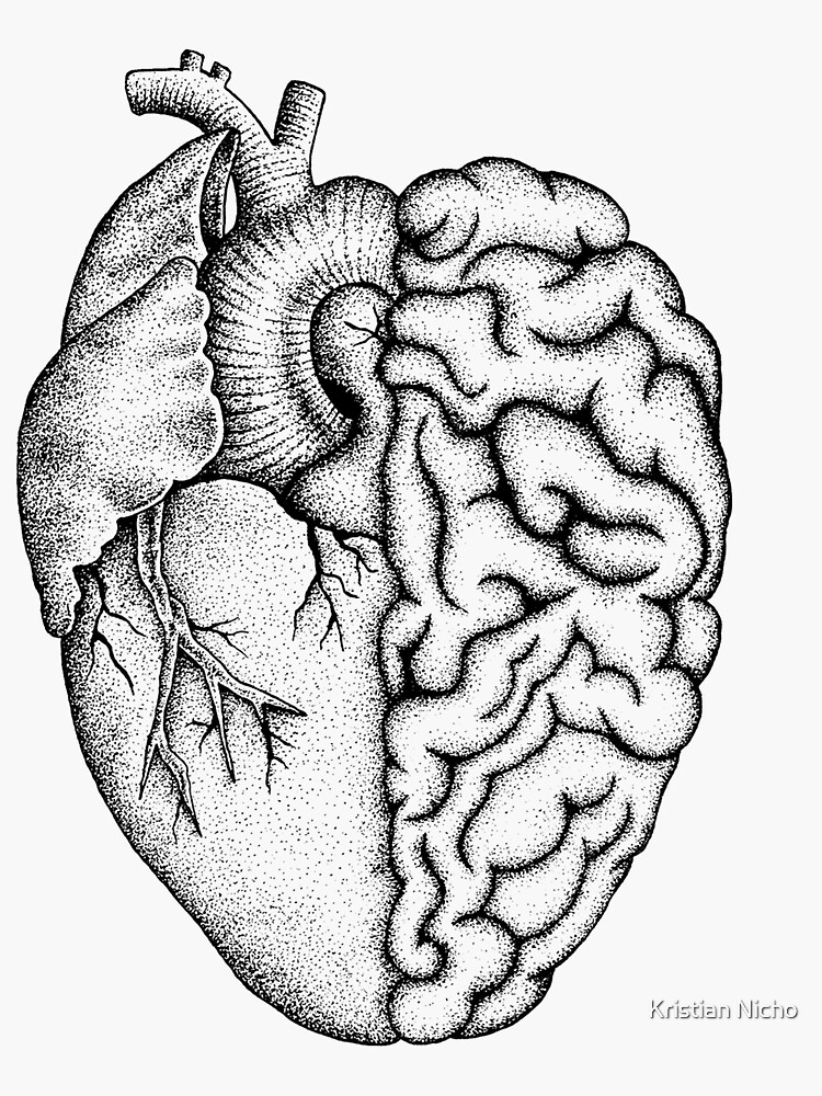 Heart and Brain by Kristiannicho