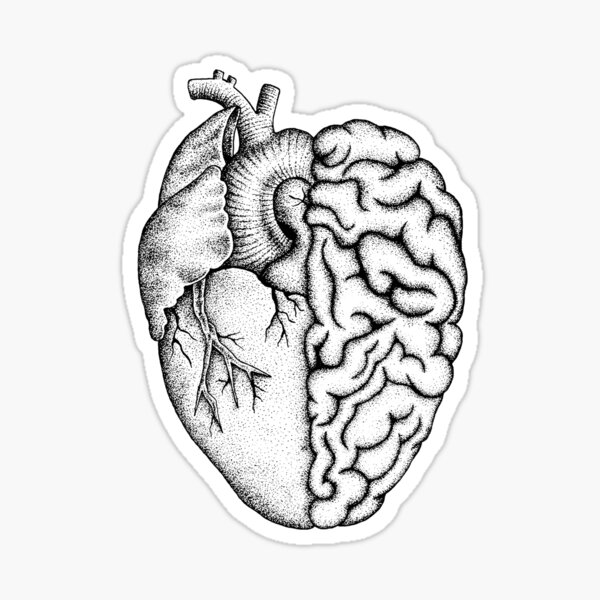 Heart and Brain Sticker