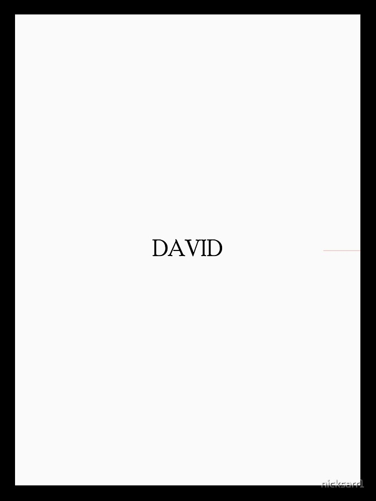 david by nicksarr1