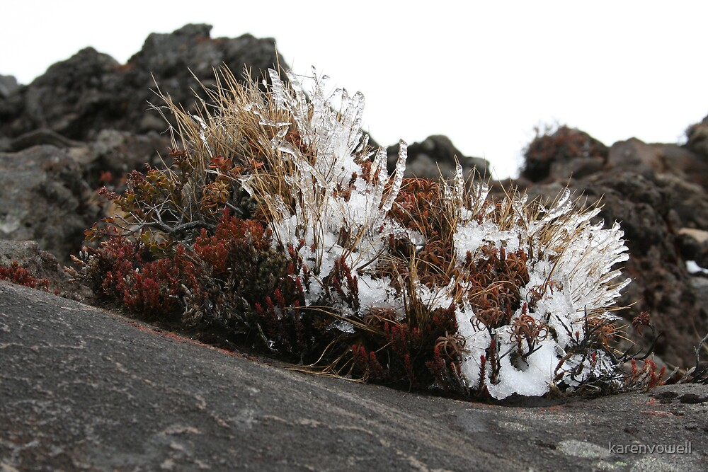 Ice Rockscape by karenvowell