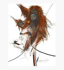 primate Photographic Print