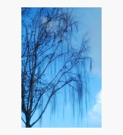 Dreamy Photographic Print