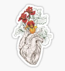 drawing Human heart with flowers Sticker