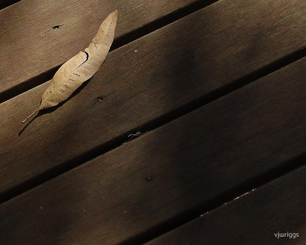 Wooden Leaf by vjwriggs