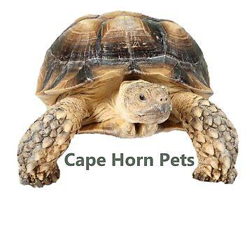 Cape Horn Pets Sheldon by crimsonflower13