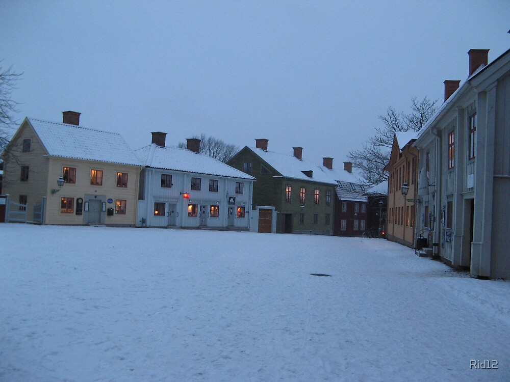 Linkoping by Rid12