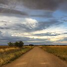 Telescope Road, Parkes, NSW by Christine Smith