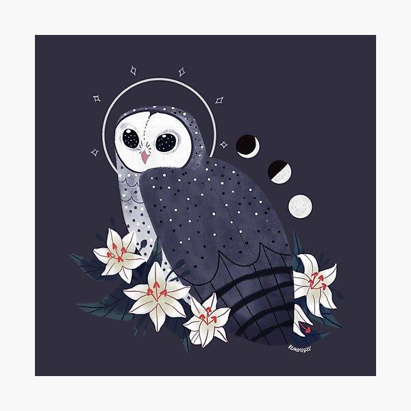 Familiar - Sooty Owl Photographic Print