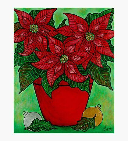 Poinsettia Season Photographic Print