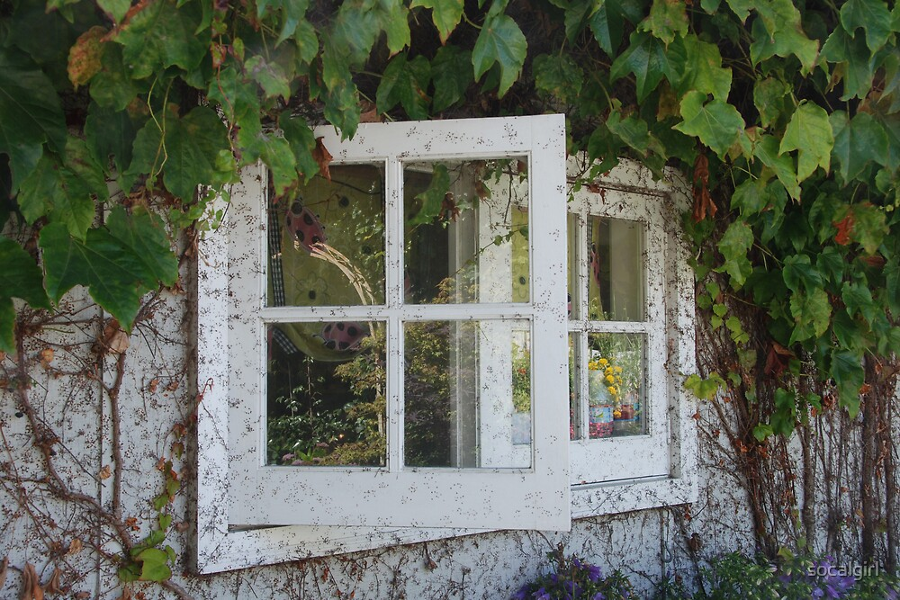 Open Window by socalgirl