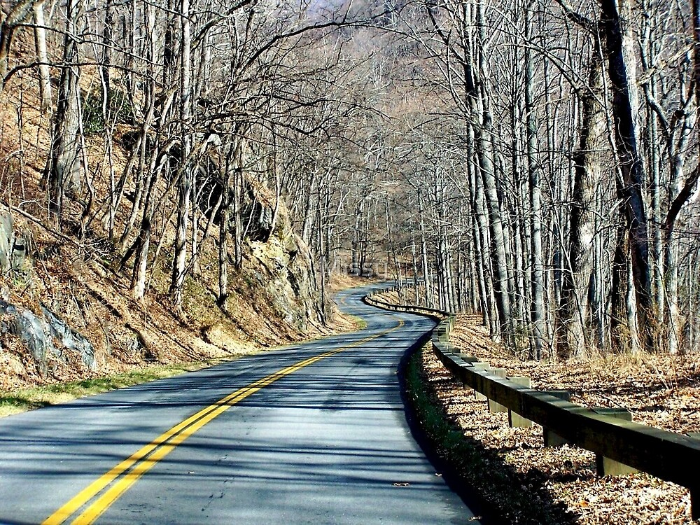 Winding road in the mountains by Missy