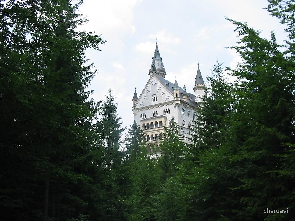Neuschwanstein castle by charuavi