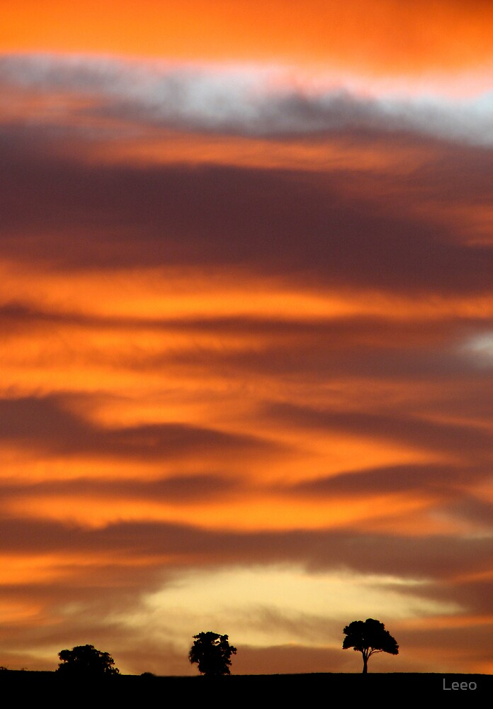 Sunrise by Leeo