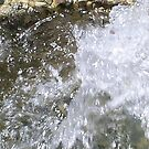 pumping water by oilersfan11