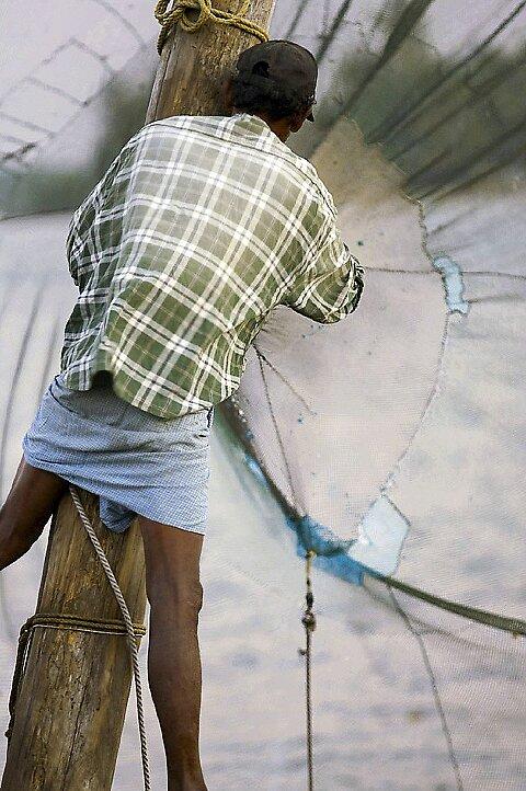 Chinese fishing nets by Anthony Begovic