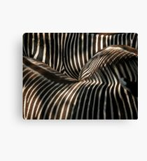Abstract Reality Canvas Print